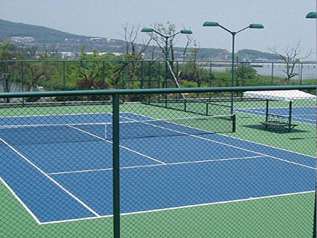 排球场围网是同一概念吗